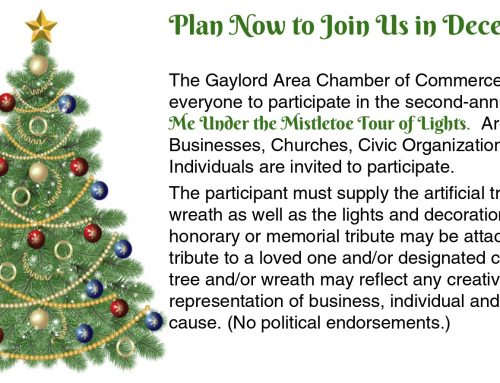Meet Me Under the Mistletoe Holiday Tour of Lights